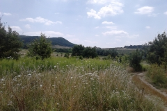 Séta az Árpád-kori falu, Gercse területén