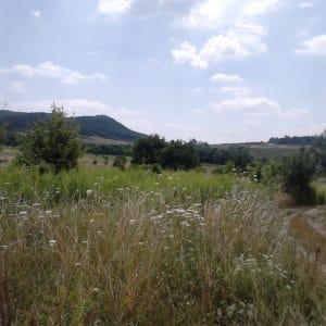 Gercse, Árpád-kori falu Pesthidegkúton